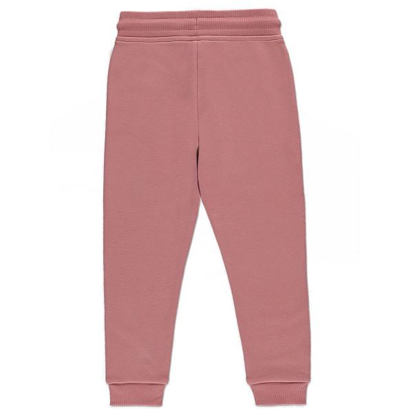 Комплект з кроликом ніжно-рожевий світшот, джогери